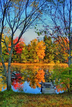 So beautiful, I want to go back and see it in autumn! Autumn Lake, Adirondacks, New York Fall Pictures, Pretty Pictures, Amazing Pictures, Travel Pictures, Beautiful World, Beautiful Places, Autumn Lake, Autumn Trees, Autumn Scenery