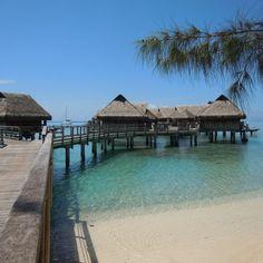 Maisons sur pilotis à Bora Bora. Tahiti, Intercontinental Bora Bora, Tropical, Instagram, Outdoor Decor, Travel, Home, Sustainable Tourism, House On Stilts