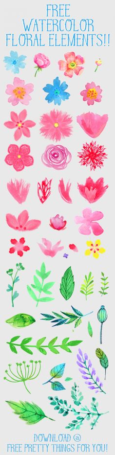free-watercolor-flower-digital-image-clipart-FPTFY-3                                                                                                                                                                                 More