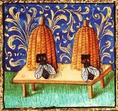 Abeilles & ruches - Manuscrit médiéval enluminé. Plus