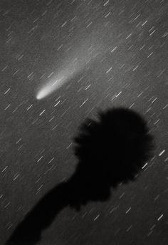 1986. El cometa Halley llegó el 10 de febrero a su punto más cercano al Sol en 78 años. La sonda Pioneer 12, que orbitaba Venus, envió información sobre la nube de gas que forma la cola del cometa. La ciencia se abría paso entre otra nube: la de la superstición que siempre causa lo desconocido. La imagen fue tomada en la ciudad de Monterrey, Nuevo León. Foto: Juan José Cerón