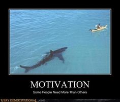 funny motivational posters | ... , shark, demotivational, posters, humor, jokes, comedy, funny, lol