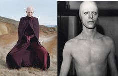 Both sometimes go bald | Conspiracy: Are Tilda Swinton And David Bowie The Same Person