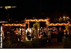 Temecula Wineries Weddings