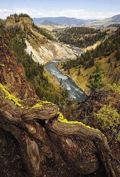 At the Yellowstone National Park in USA.