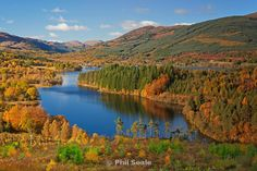 Loch Ard in the Trossachs - Phil Seale Photography Leap Of Faith, Forest Park, Wonderful Places, Ireland, National Parks, River, Explore, Google Search, Queen Elizabeth