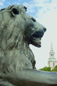 Trafalgar Square Lion, London