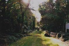 Prag, Neuer Jüdischer Friedhof: http://jaettipussi.de/blogs/blende8/prag-neuer-juedischer-friedhof/ #praha #cemetery #czechia #photography #analog