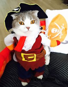 Turn your cat into a badass captain hook pirate with this irresistibly cute Pirate Cat Costume. Cat Pirate Costume is sure to be a hit with guests!