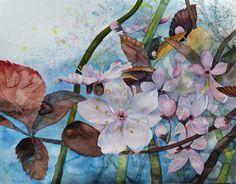 Frühling in Mecklenburg – Vorpommern | Blüten der Zierkirschen künden vom Frühling (c) Aquarell von Frank Koebsch