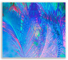 WATER COCONUT | Wall Art | Digitally Painted  Photograph on Canvas | Gallery Wrap |  Floating Frame |  www.artintelligence.biz
