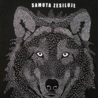 ♥ VLČÍ OHOZ ♥ pro Hláďu Panther, Husky, Wolf, Outfit, Animals, Outfits, Animales, Animaux, Panthers