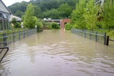 Evergreen Brick Works flood recovery plan contains lessons for Toronto Brick Works, 4 Life, Ecology, Garden Bridge, Evergreen, Toronto, It Works, Outdoor Structures, How To Plan