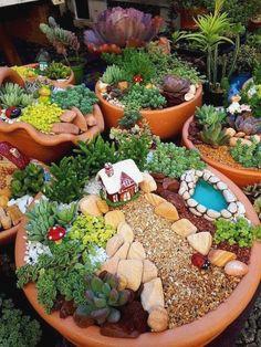 Indoor Fairy Gardens, Fairy Garden Plants, Mini Fairy Garden, Fairy Garden Houses, Gnome Garden, Miniature Fairy Gardens, Fairy Gardening, Fairies Garden, Miniature Plants