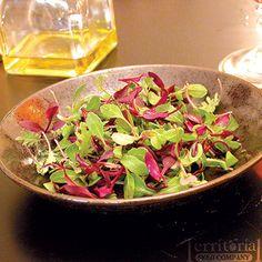 Purple Mizuna mustard