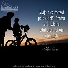"""""""Viața e ca mersul pe bicicletă. Pentru a-ți păstra echilibrul trebuie să te miști."""" ~ Albert Einstein #heartfulness   #inspiratii_zilnice   #hfnro Heartfulness Romania - Google+ E Ca, Einstein, Google, Signs, Movies, Movie Posters, Films, Shop Signs, Film Poster"""
