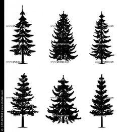 desenhos de pinheiros