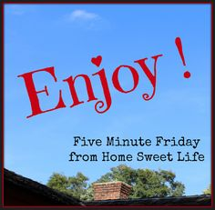 Home Sweet Life Blog ~ Life isn't always fun. I have two good friends battling cancer, and another one who is sick with pneumonia. These trials in their lives have been God's reminder to me that I need to enjoy each and every day. Live life and enjoy each days' gifts!