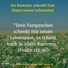 """Schauen Sie also auf Gott, der Ihnen mehr als gut hilft, durch alle Bedrohungen und Bedrängnisse durchzukommen. Und schauen Sie nicht gelähmt wie die Maus auf die Schlange. Schauen Sie voller Vertrauen auf Gott, der Ihnen hilft: """"Das ist mein Trost in meinem Elend, daß dein Wort (oder: deine Verheißung) mich neu belebt hat."""" (Psalm 119, Vers 50; Menge Bibel)"""