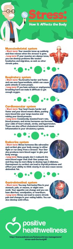 Stress: How it Affects the Body – Positive Health Wellness Infographic
