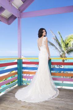 Sincerity by Justin Alexander- 3785 back. At Bucci's Bridal in Pewaukee, WI | www.buccisbridal.com  #milwaukee #marriedinmilwaukee #wibride #wisconsinbride #wisconsin #bridalshop #bridalgown #weddingdress #lacedress #lowback #sinceritybridal