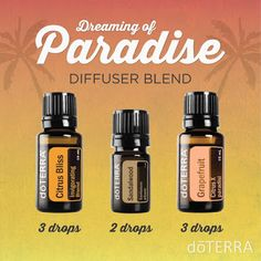 Natural Earth Oils: DREAMING OF PARADISE DIFFUSER BLEND