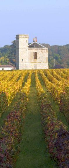 #Vineyards in #Burgundy