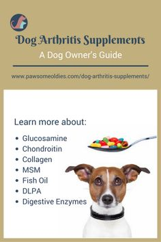 Various dog arthritis supplements to help prevent joint pain and osteoarthritis in dogs. Salmon Dog Treats Recipe, Dog Treat Recipes, Healthy Dog Treats, Dog Health Tips, Dog Health Care, Cat Health, Dog Arthritis Supplements, Arthritis Remedies, Rheumatoid Arthritis