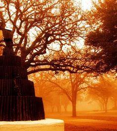 Bonfire Statue in Spence Park