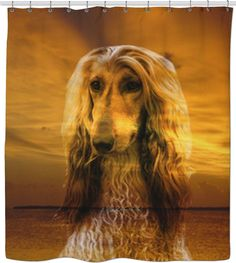 Check out my new product https://www.rageon.com/products/dog-afghan-hound-shower-curtain?aff=BWeX on RageOn!