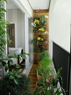 10 Clever Ways To Decorate Your Balcony Area Gardeningplants For Balconyapartment