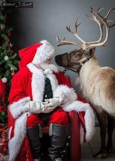 Santa & reindeer, Santa Clause, Father Christmas, Kris Kringle, St NIck, St Nicholas