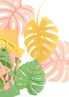 DIY Paper Monstera Leaves / Des feuilles en papier