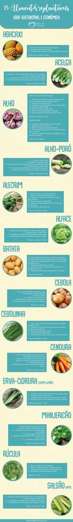 15 Alimentos replantáveis: ideia sustentável e econômica - Blog da Mimis #replantáveis #alimentos #plantas #frutas #verduras #temperos #economia #dieta