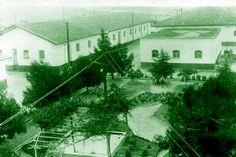 PENDİK Veteriner Kontrol Enstitüsü 1901