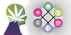Health Risks of Marijuana Use (James Geiwitz, Ph.D.) - Cannabis Digest - good article refutes poor studies that claim cannabis is dangerous