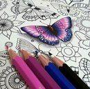 Раскраска: Таинственный сад
