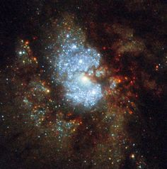 bright blue stars encircled by dust