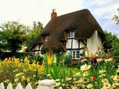 Cute n cozy house
