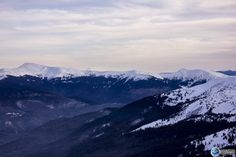 Picture of Carpathian Mountains in winter