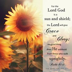 Sunflower bible verse the word for flowers psalms terror fear quotes christian wallpaper with . sunflower bible verse your word Hope In Jesus, Jesus Is Lord, Jesus Christ, Savior, Quotes Arabic, Religious Quotes, Spiritual Quotes, Bible Verses Quotes, Bible Scriptures
