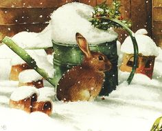 Bunny in the snow by Marjolein Bastin, scanned by MarquiseLem