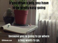 Ride the bug
