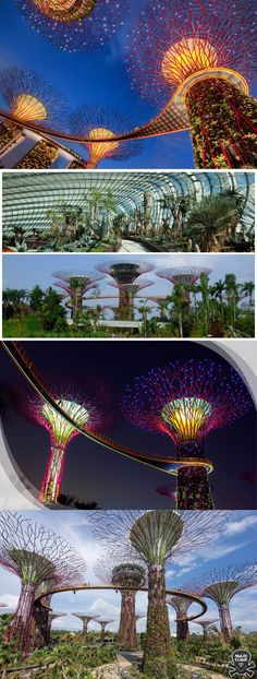 Gardens by the Bay - Singapore #Singapore #Singapura #websynergies