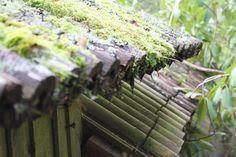 . Bamboo Roof, Bamboo Building, Bamboo Construction, Bamboo Crafts, Pergola, Survival Hacks, Landscape, Wood, Garden
