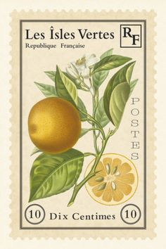 French Stamp II  by Maria Mendez   -Repinned by Totetude.com