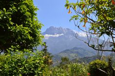 what a view! Mount Kinabalu!