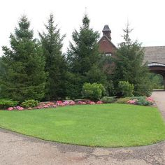 Traditional Landscape Privacy Hedges Design Ideas, Pictures, Remodel, and Decor - page 73