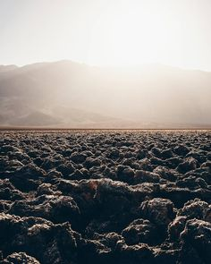 People don't post many photos of Devil's Golf Course it doesn't have a blue lake and a snow top mountain as background. It's instead dry the hottest place on earth not very diverse if you look around the name perhaps not the most attractive but it's  on my top 5 best places I have been to. . . . . #America #usa #Deathvalley #sunrise #furnacecreek #travelphotography  #roamtheplanet #exploretocreate #outsideculture #visualembassadors #adventurethatislife #earthpics #roamtheplanet…