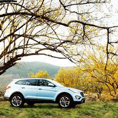 SUV의 계절, 맥스크루즈가 부르는 봄의 노래  The season of SUV, a spring song sung by Maxcruz